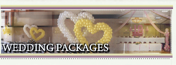 Balloonville - Wedding Packages.